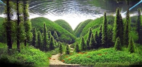 Aqua-Hills