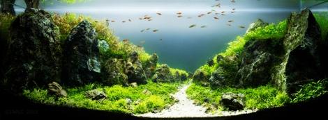 Aqua-Path