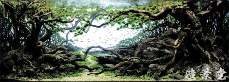 Aqua-Roots