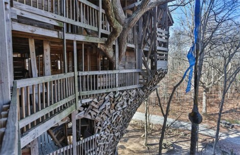 Inside-the-Worlds-Biggest-Tree-House1-640x416