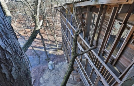 Inside-the-Worlds-Biggest-Tree-House12-640x415