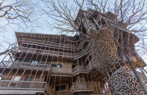 Inside-the-Worlds-Biggest-Tree-House13-640x416