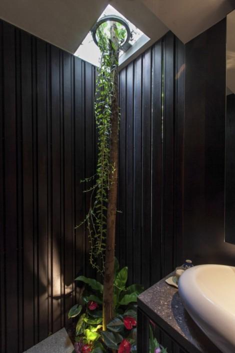 7-Indoor-tree-600x900