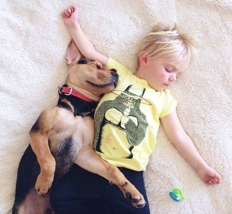 A-Naptime-Story-with-Dog-and-Baby-3