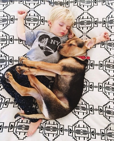 A-Naptime-Story-with-Dog-and-Baby-5