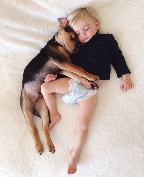 A-Naptime-Story-with-Dog-and-Baby-6