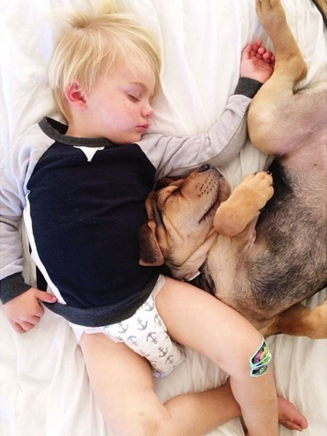 A-Naptime-Story-with-Dog-and-Baby-9