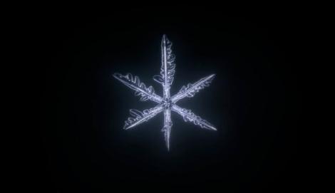 スクリーンショット 2014-02-25 0.34.03