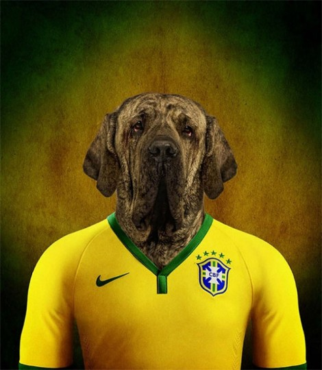 Dogs-of-World-Cup-Brazil-201412-640x736