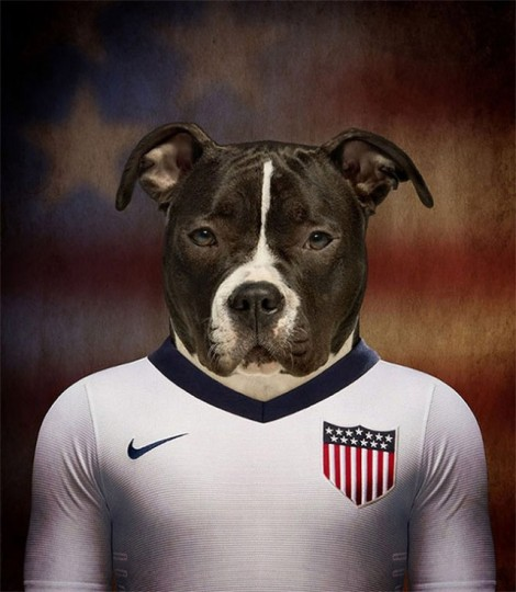 Dogs-of-World-Cup-Brazil-20144-640x736