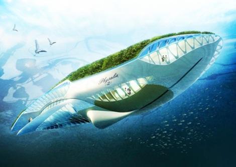 whalegarden-ed01