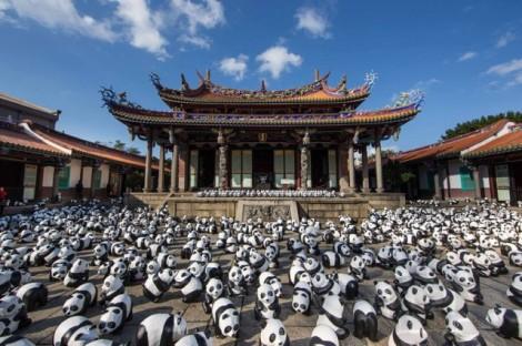 Papier-mache-Pandas-in-Hong-Kong8-640x426