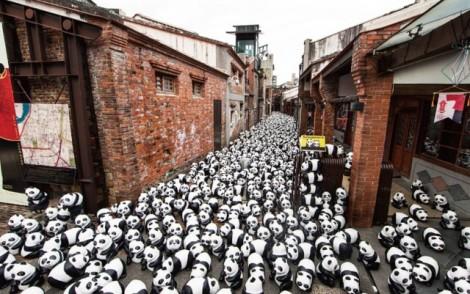 Papier-mache-Pandas-in-Hong-Kong9-640x401
