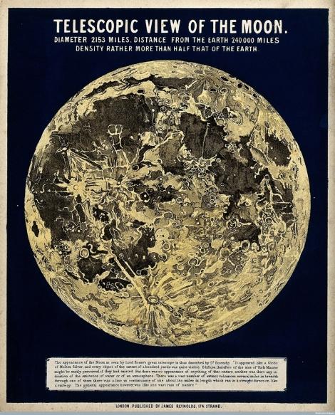 Infographic-Moon