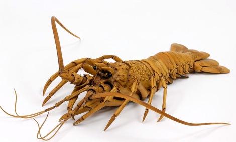 lobster-3
