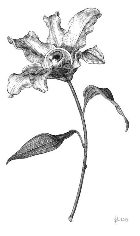Modern-engravings-15