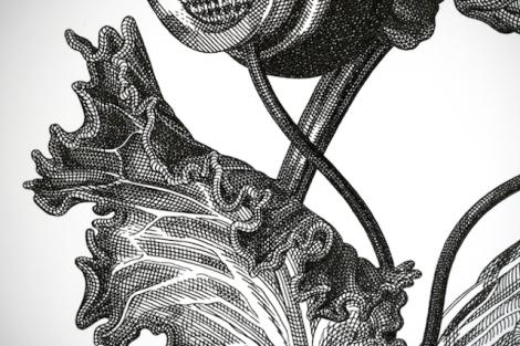Modern-engravings-5